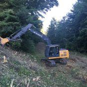 land-clearing-21.JPG