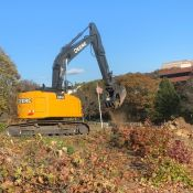 land-clearing-1.JPG